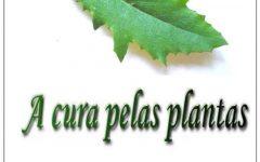 Curso de Fitoterapia Online – Estudo Das Plantas Medicinais