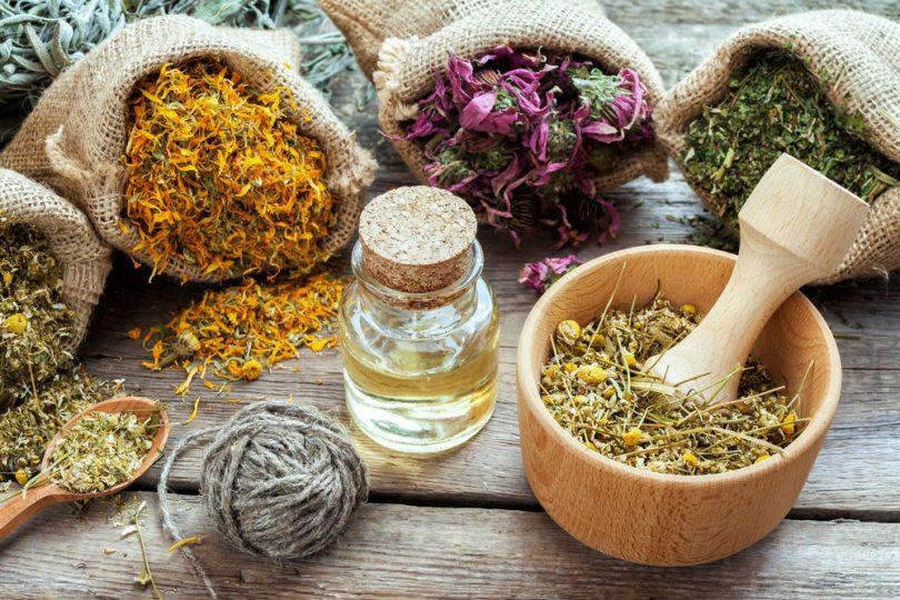 o que é fitoterapia a cura pelas plantas