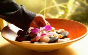curso de feng shui online